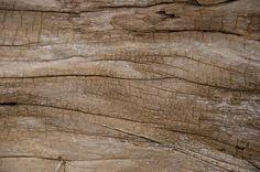 wood-textures-high-quality-8.jpg (500×332)
