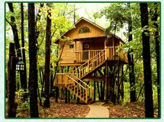 The Bungalow Treehouse in Eureka Springs, Arkansas. $165 per night for 2 adults. Twenty-two (22) feet off the ground!