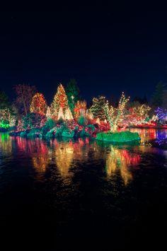 Christmas lights by Jan Heuninck