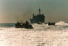 USMC AAVs