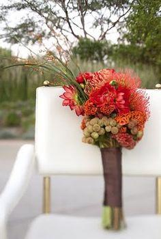 pincushion proteas--- Love!!