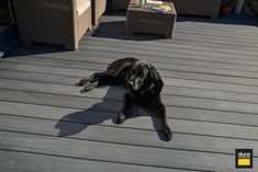 Our Resist composite decking range is the first co-extruded decking fire resistant to class B. Raised Deck, Thermal Expansion, Pebble Grey, Pressure Washing, Class B, Composite Decking, Natural Wood, Armour, Composition