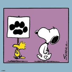 Vote for Snoopy..Yes