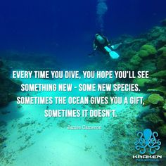 The Ocean is full of gifts. Only diving will let you find such gifts. So let's scuba dive and discover the vast blue! Find our scuba diving products at: krakenaquatics.com #diving #scuba #sea #underwater #scubadiving #gopro #ocean #diver #underwaterphotography #nature #fish #travel #scubadive #beach #freedive #freediving #spearfishing #sealife #summer #water #uwphotography #adventure #reef #photooftheday #blue #krakenaquatics #paradise #swimming #natgeo #snorkel