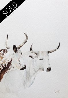 nguni in meadow painting - Google Search