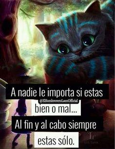 Triste Disney, Cute Spanish Quotes, Sad Girl, Sad Love, Tim Burton, Memes, Kawaii Anime, Alice In Wonderland, Real Life