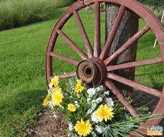 Quer dar mais charme ao seu jardim? Reutilize rodas d'água ou de carroças antigas para decorar os canteiros de flores <3