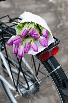 bicycle and flowers