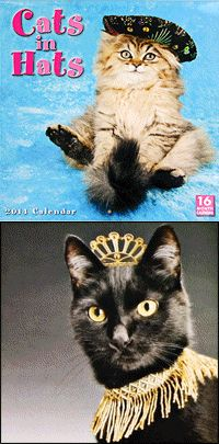 Cats In Hats 2014 Calendar at The Animal Rescue Site