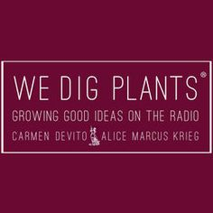 We Dig Plants® brings the Culture to Horticulture. Examining our human interaction with plants via authors, industry professionals, historians, plants people, cooks, gardeners & artists and combining our 20 plus years of designing gardens, we delve into the magic, power and influence of plants within a global context and share that charm with international listeners.