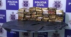 NONATO NOTÍCIAS: Carga de 50 kg de cocaína avaliada em R$ 1 milhão ...