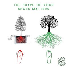 Just like tree roots, your feet will conform to the space you grant them! Barefoot Running, Going Barefoot, Foot Reflexology, Tree Roots, Shape Of You, Keep It Simple, Earth, Shapes, Runners