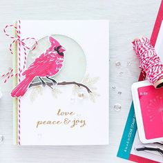 And here is my first card  of many using @simonsaysstamp Masterpiece Box…
