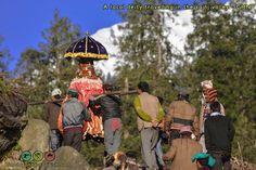 Raktisar trek in the Great Himalayan National Park Himalayan, Trek, National Parks, Traditional, Live, Himalayan Cat, State Parks
