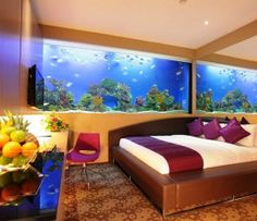1000 images about aquarium on pinterest fish tanks for Fish tank bedroom ideas
