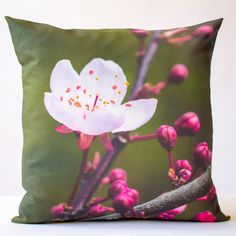 Https Www Pinterest Com Explore Cherry Blossom Decor