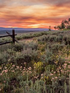 If you love Utah's back country, you'll love this wildflower sunsetnear Strawberry Reservoir. Utah landscape art prints make unique Christmas gift ideas. Available on elegant gallery wrapped canvas, stunning metal prints, and economical paper prints, Utah art gifts start under $25 through November 30th. Shop now at www.rogueauroraphotography.com/wall-art-shop/strawberry-smoke.