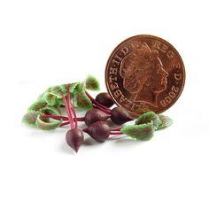 NJD Miniatures, lovely veined leaves