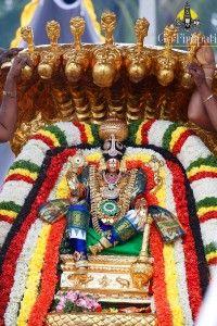 Sri Padmavathi Amma Varu Karthika Brahmotsavam 2015