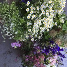 Pretty flowers this morning to ignore the madness. Diy boxes for pink and white with a touch of blue Pretty Flowers, Fresh Flowers, Country Wedding Flowers, Diy Box, Claire, Madness, Instagram Posts, Plants, Pink
