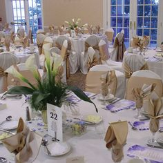 The radisson paper valley hotel all decked out in white with hot also trending on pinterest junglespirit Images