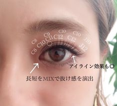Eyelash Extensions Styles, Lash Growth, Korean Makeup, Natural Makeup, Eyelashes, Make Up, Hairstyle, Cool Eyes, Beauty