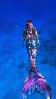 Mermaid Gifs, Mermaid Cove, Mermaid Melody, Mermaid Art, H2o Mermaids, Fantasy Mermaids, Mermaids And Mermen, Real Mermaid Videos, Beautiful Scenery Pictures
