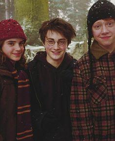 Harry Potter Trio, Memes Do Harry Potter, Magia Harry Potter, Harry Potter Fandom, Potter Facts, Daniel Radcliffe, Severus Snape, Draco Malfoy, Hermione Granger