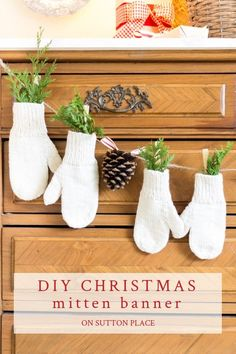 DIY Christmas mitten