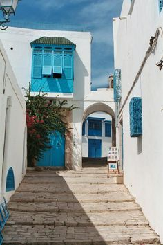 Sidi Bou Saïd | سيدي بوسعيد in Gouvernorat de Tunis