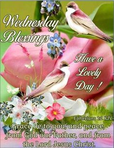320 Best Wednesday Blessings Images In 2019 Blessed Wednesday