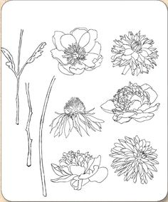 Stamper's Anonymous / Tim Holtz - Cling Mounted Rubber Stamp Set - Flower Garden,$21.95
