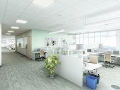 In open office areas, pay careful attention to acoustics by selecting materials that absorb sound or installing a white noise system to limit noise levels from one work station to the next.