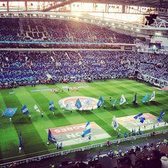 Estádio do Dragão in Porto, FC Porto Stadium