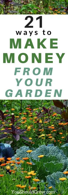 Wondering how to make money gardening? Get started here with over 20 ideas for gardening for profit from home. Ideas for earning an income from your home garden beyond selling produce at the farmer's market. #money #gardening