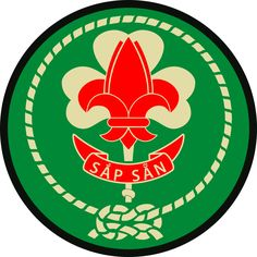 Vietnamese Scout Association