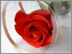 Письмо мужу Vegetables, Rose, Flowers, Plants, Pink, Vegetable Recipes, Plant, Roses, Royal Icing Flowers