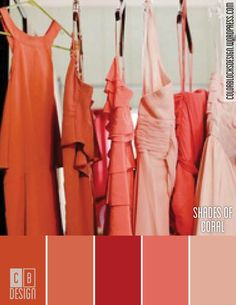 Shades of Coral | Color Blocks Design
