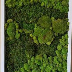 Moss Wall Art, Moss Art, Moss Decor, Green Wall Art, Custom Wall, A 17, Botanical Art, Natural Beauty, Wall Decor