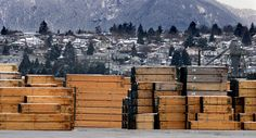 Storyline:  Canada to Defend Its Softwood Lumber in Trade Dispute With US: The dispute over Canadian softwood lumber dates back to the…