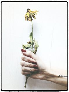 Glossy Photo Print of Imperfection by LaurenIllustrations on Etsy, $5.00