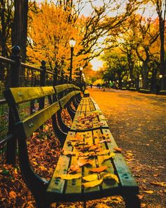 Central Park Mall by Mike Gutkin by newyorkcityfeelings.com - The Best Photos and Videos of New York City including the Statue of Liberty Brooklyn Bridge Central Park Empire State Building Chrysler Building and other popular New York places and attractions.
