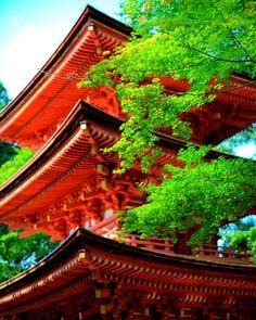 Japanese National Treasure, Jyoruri-ji three-story pagoda, Kyoto, Japan