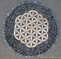 Flower of life made from natural materials. ~~pampas stalk on pebble sand, grey beach stone on light sand~~ Fibonacci Golden Ratio, Geometric Symbols, Path Design, Sacred Art, Flower Of Life, Science Art, Land Art, Mandala Art, Love And Light