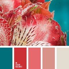 I love the sharpe contrast of the red corals with the deep tourquoise tone.  | colour palette #1405 - in colour balance