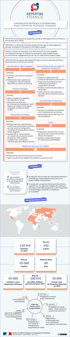 Infographie: Expertise France, la nouvelle agence d'expertise technique internationale française - France-Diplomatie - Ministère des Affaires étrangères et du Développement international