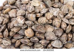 Food backgrounds - Seafood - Raw lupins clams. by eZeePics Studio, via Shutterstock