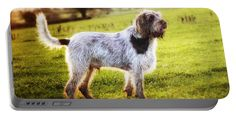 Brown Portable Battery Charger featuring the photograph Brown Roan Italian Spinone by Heidi Anne Morris