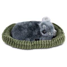 Perfect Petzzz Huggable Plush Grey Koala W/Pet Bed, Adoption Certificate New Nib #PerfectPetzzz