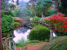 Japanese Garden Elements - Bridges  Tatton Park